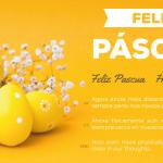 Feliz Pascoa - WLP
